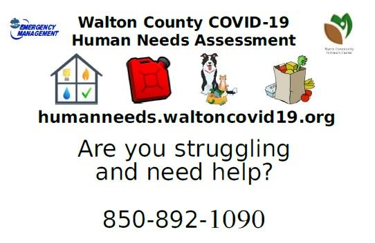 Walton County Needs Assessment Postcard